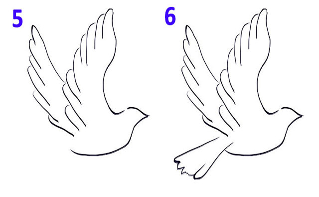 Як намалювати пташку