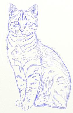 Як намалювати кота