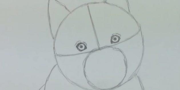 Як намалювати собаку хаскі