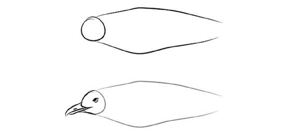 Як намалювати пташку у польоті