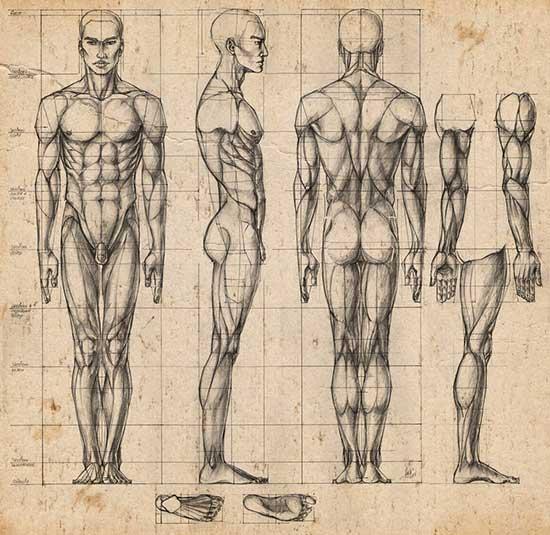 Як намалювати людину