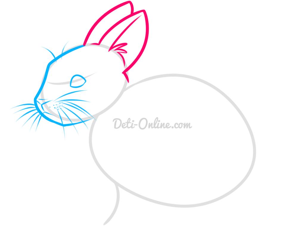Як намалювати кролика поетапно