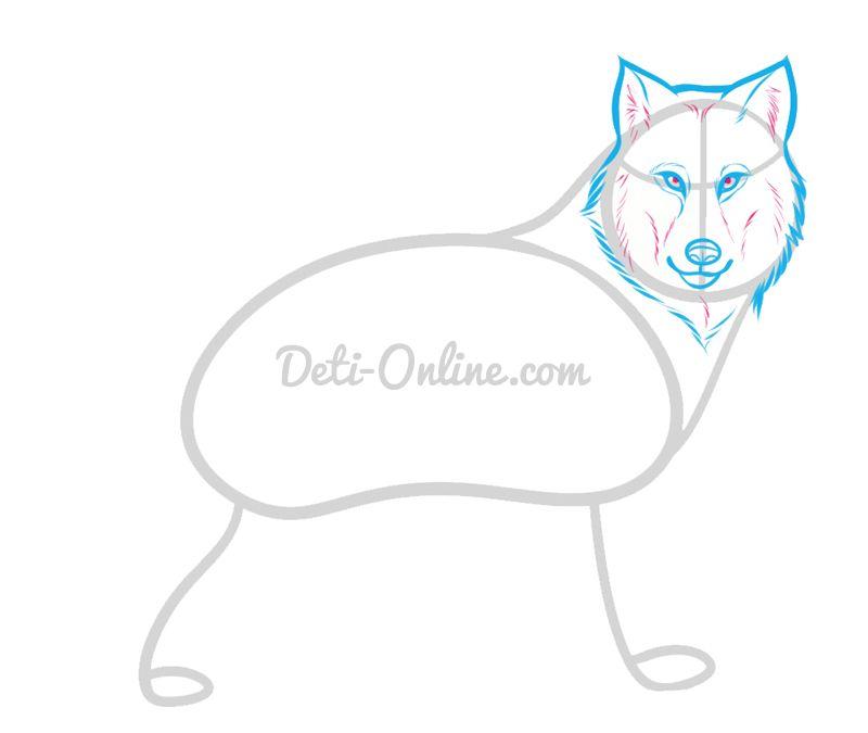 Малюнок вовка