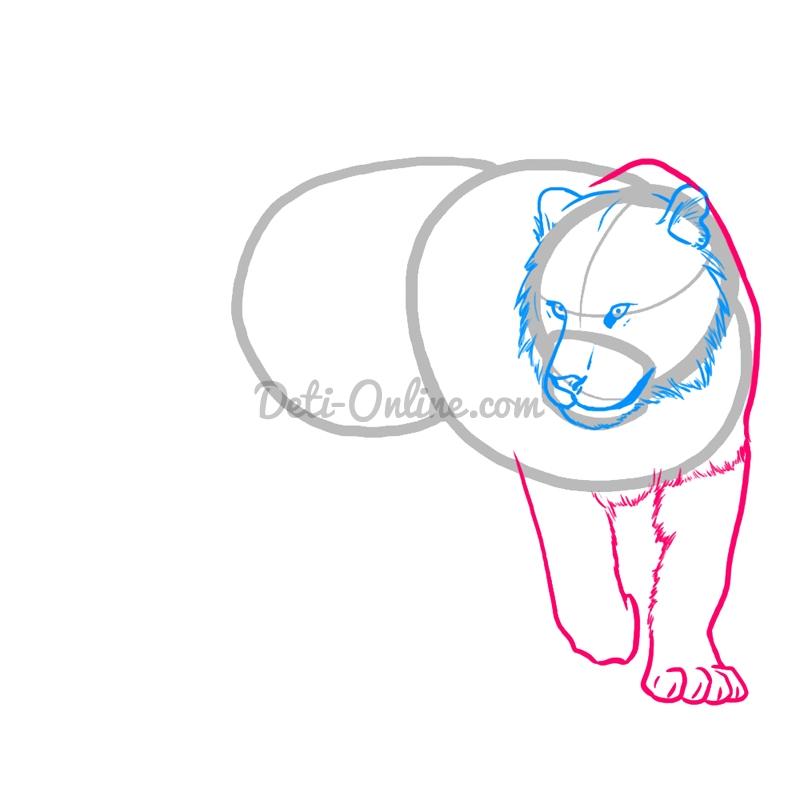 Як намалювати тигра поетапно