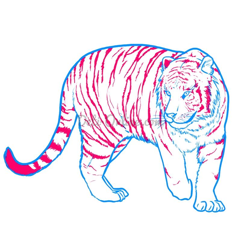 Як намалювати тигра