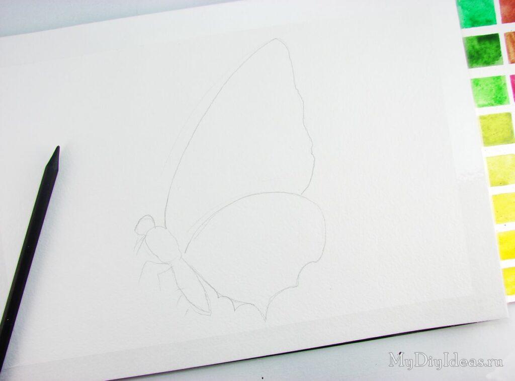 Як намалювати метелика