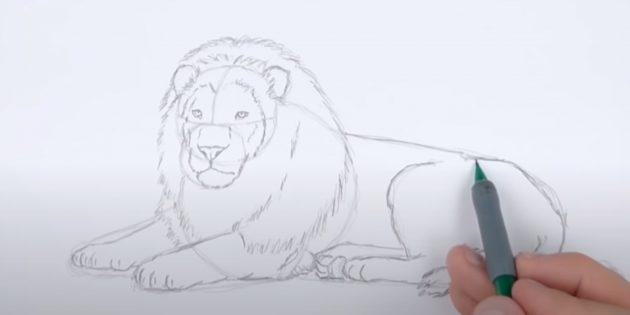Як намалювати лежачого лева