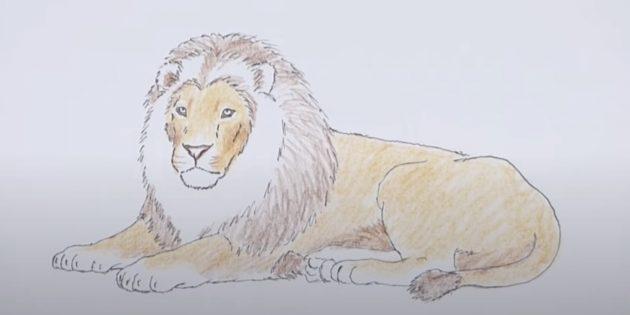 Як намалювати лева поетапно