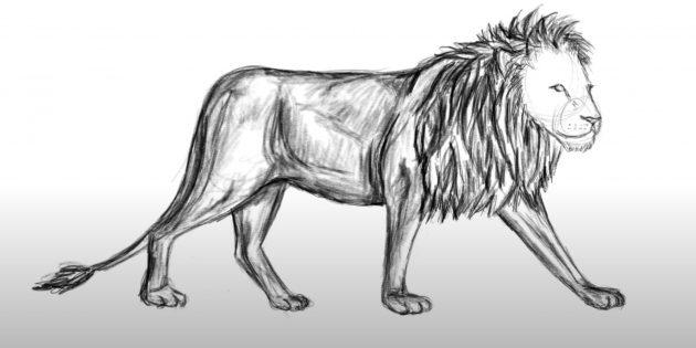 Як намалювати реалістичного лева