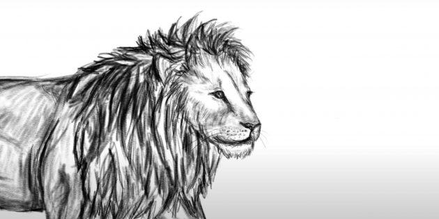 Як намалювати лева у русі