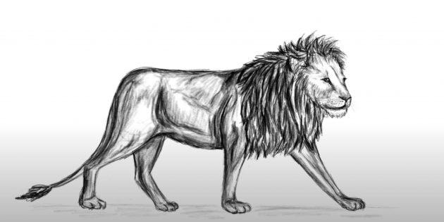 Красивий лев