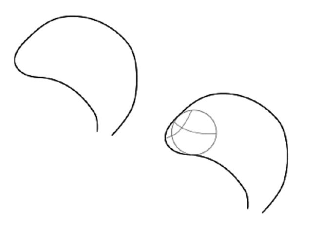 Як намалювати дельфіна крок за кроком
