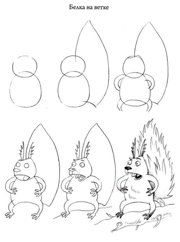 Як намалювати білку крок за кроком