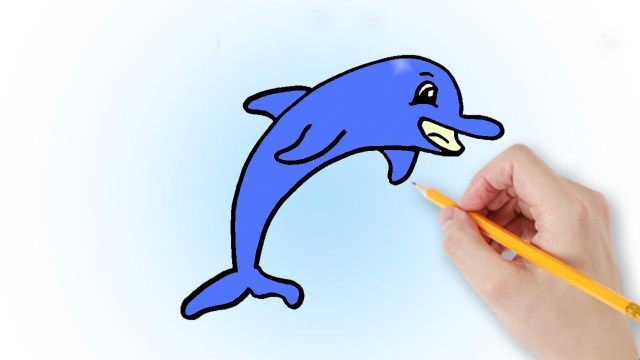 Як намалювати дельфіна поетапно