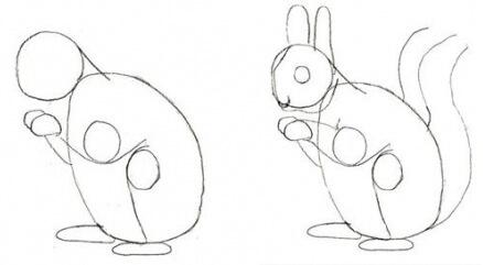 Як легко намалювати білку