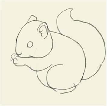 Як намалювати білку поетапно