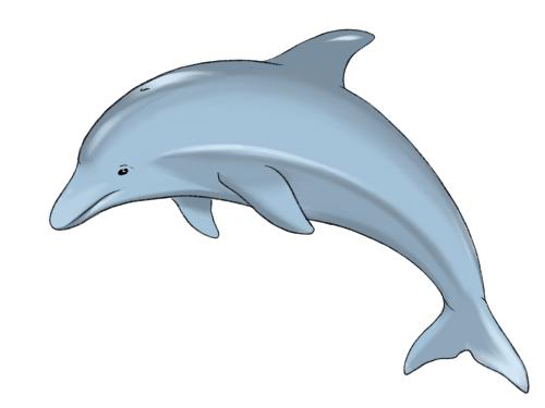 Як намалювати дельфіна