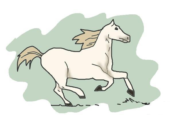 Красивий кінь