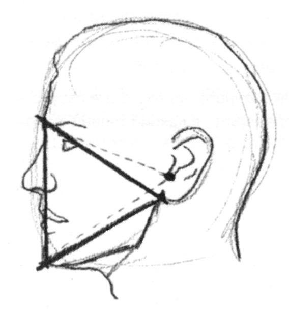 Як намалювати лице поетапно