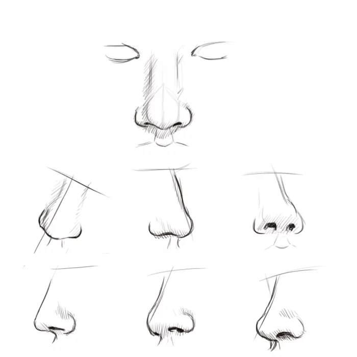 Як правильно намалювати ніс