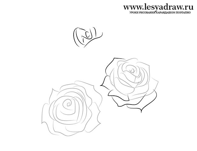 Бутон троянд