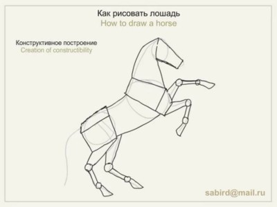 Як намалювати коня поетапно