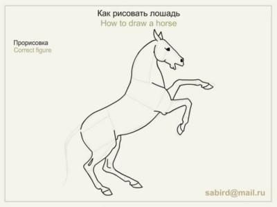 Малюнок коня на дибах