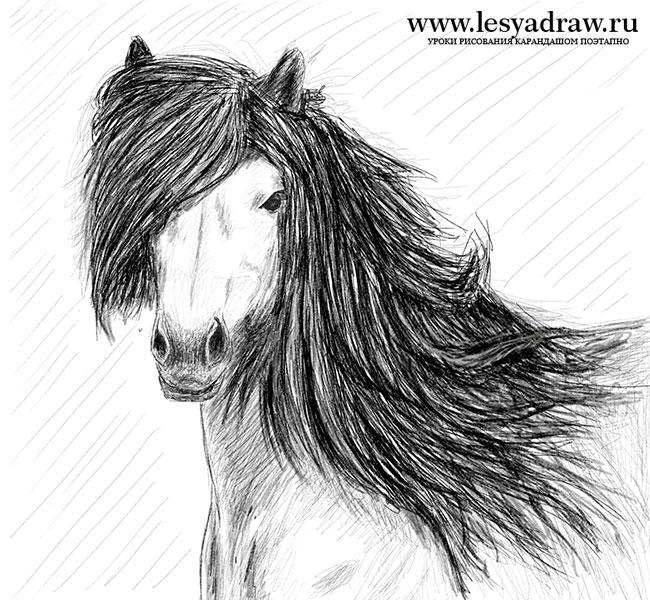Малюнок коня олівцем