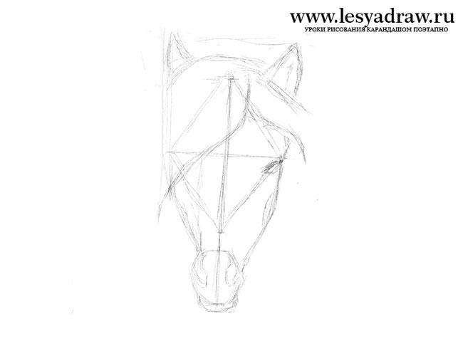 Як намалювати коня олівцем поетапно