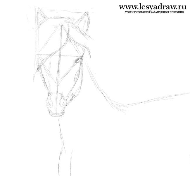 Малюнок коня