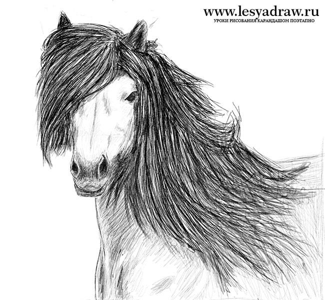 Малюємо коня