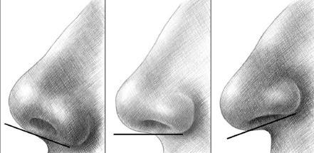 Як намалювати ніс збоку