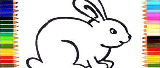 Як намалювати кролика