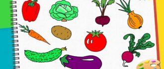 Як намалювати фрукти і овочі