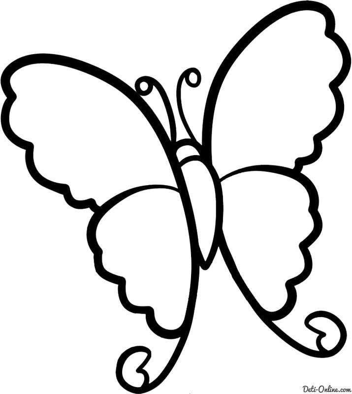 Малюнок метелика