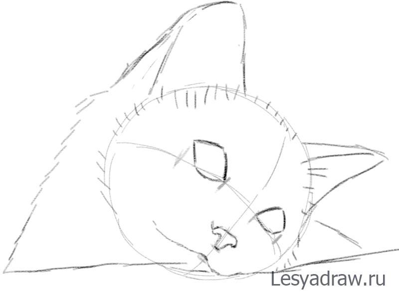 Малюнок котика