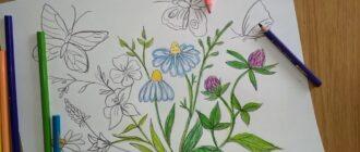 Як намалювати літо