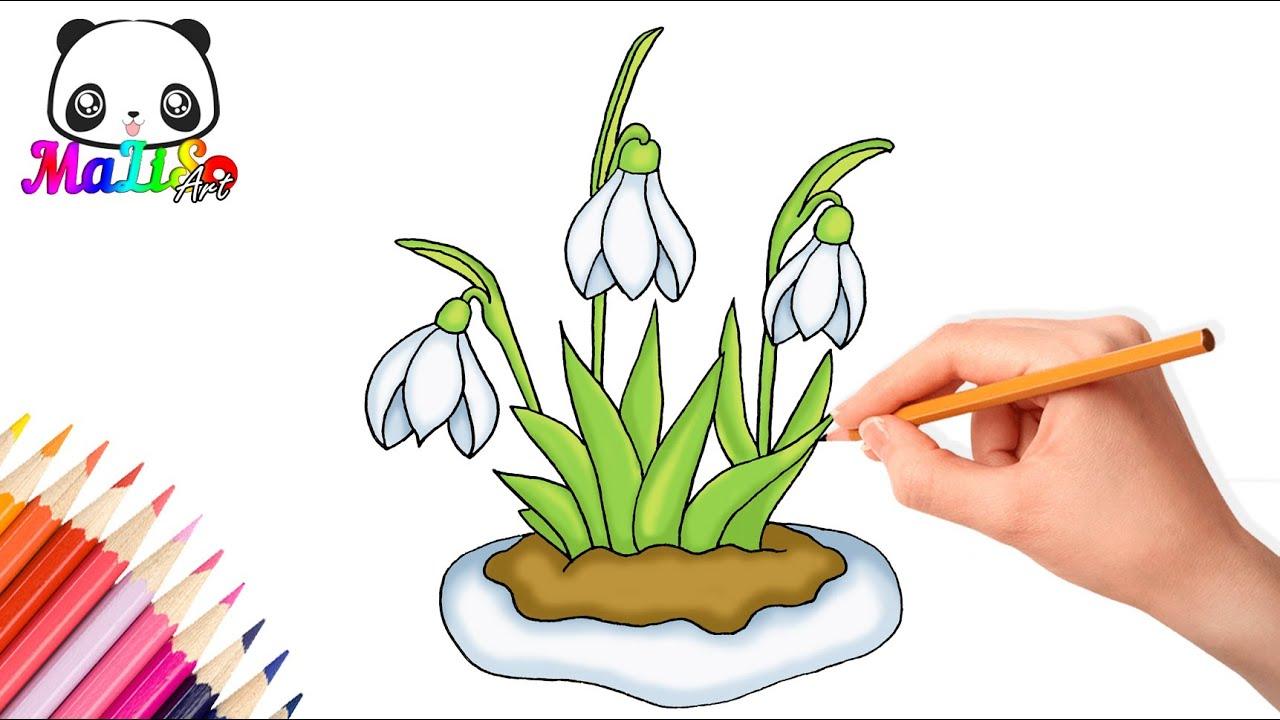 Як намалювати підсніжник