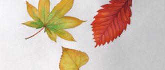 Як намалювати листок
